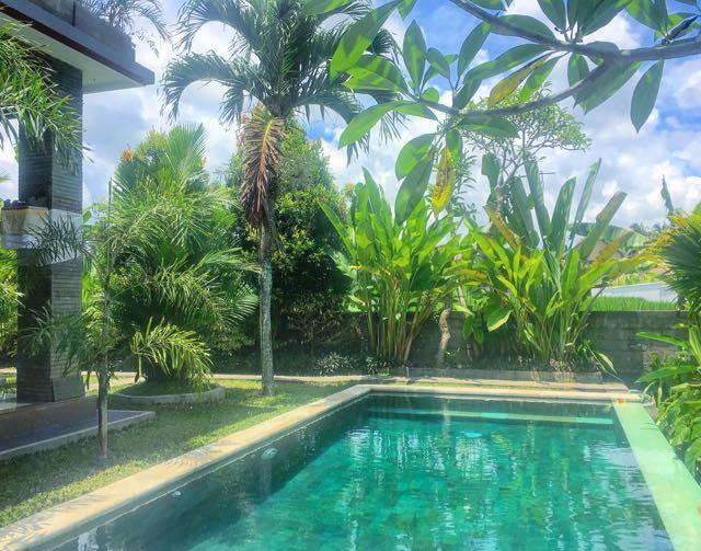 Find A House For Rent In Ubud - Traveltomtom net - Traveltomtom net