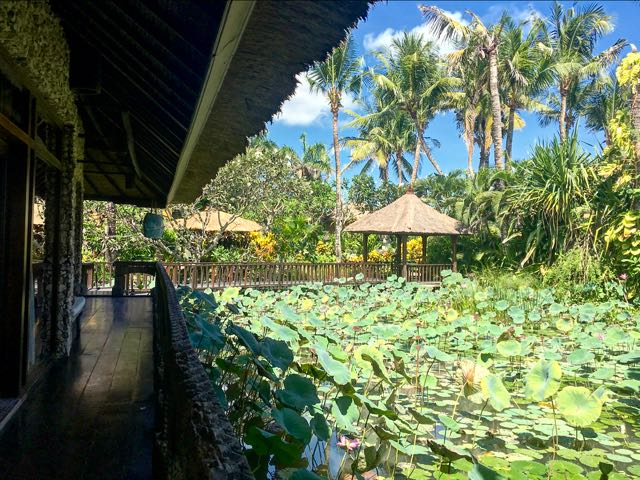 where to stay in canggu 1
