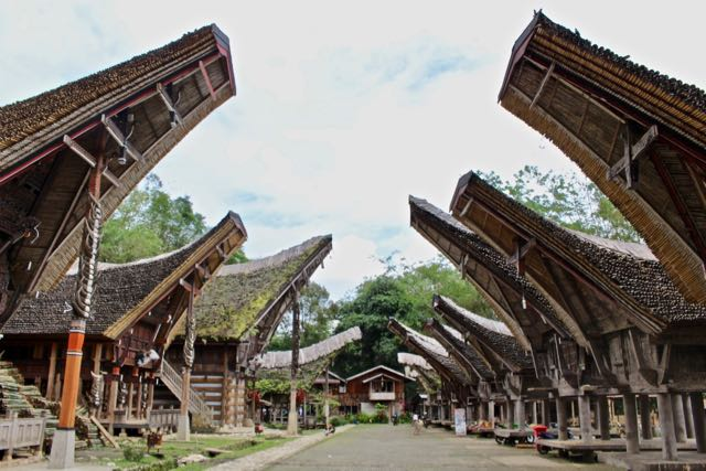 things to do in toraja local village