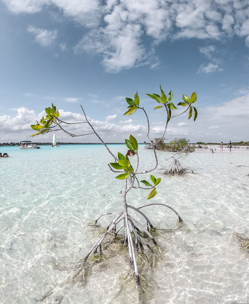 things to do costa maya bacalar