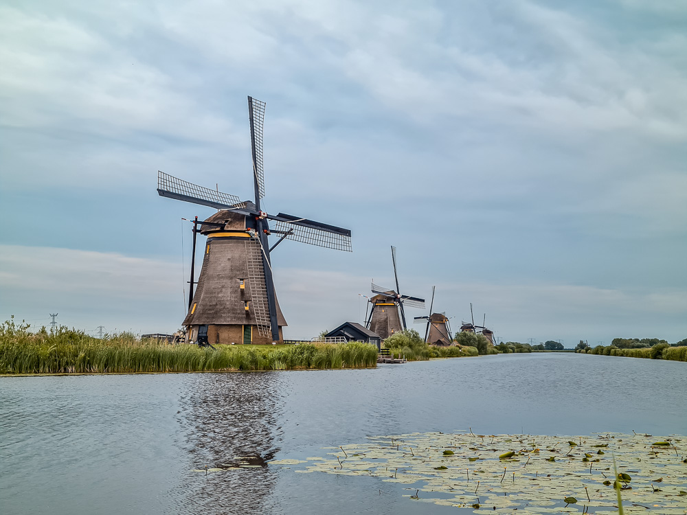 kinderdijk netherlands things to do