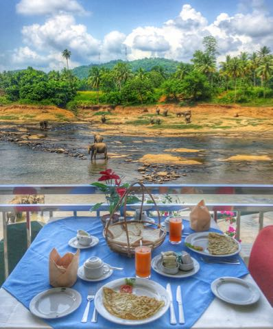 breakfast with a view sri lanka