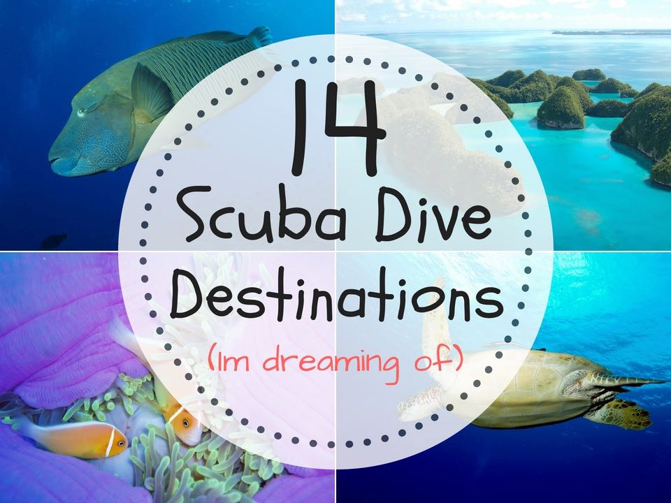 14 Best Scuba Diving Destinations In The World (Im Dreaming Of)