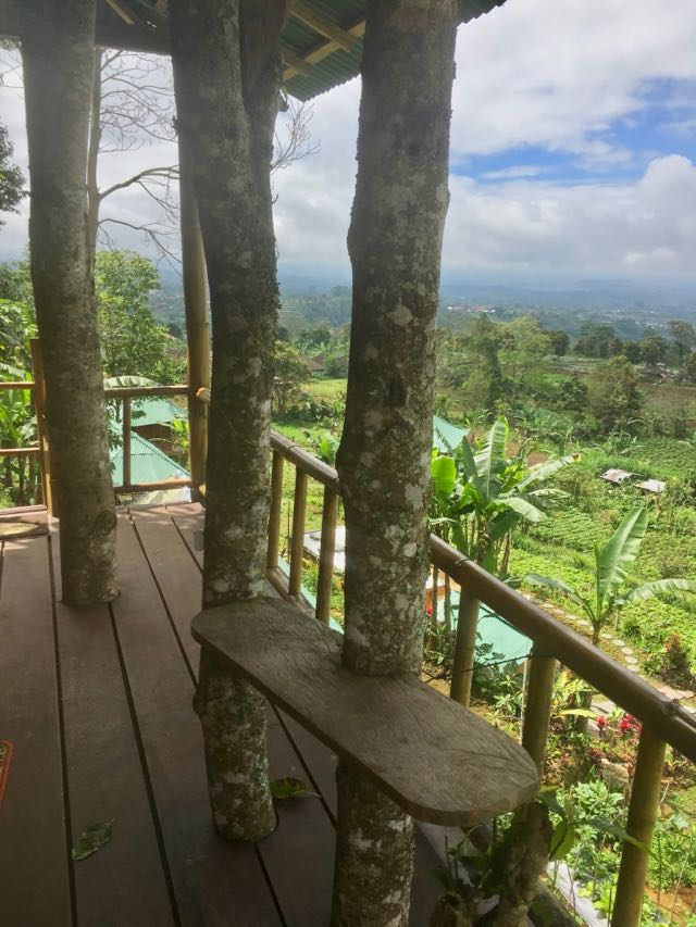 where to stay in north bali 1